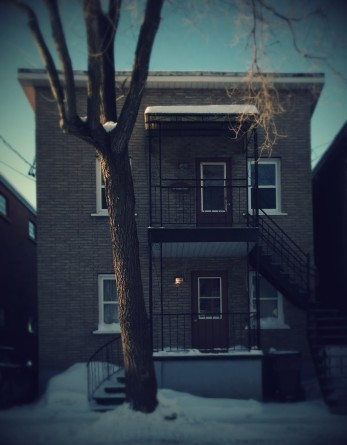 351 rue Laurier (2)