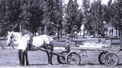 Roméo Boudreau, homme à chevaux-02